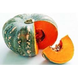 Pumpkin  (মিষ্টি কুমড়া)