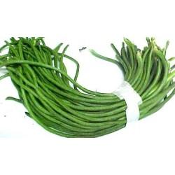 Vihreät pitkät pupu (Borboti)