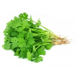 Fresh Coriander Leaves 100g