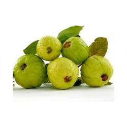 Guava (পেয়ারা)